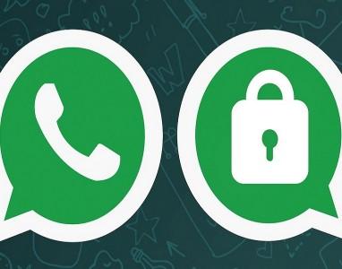 Saiba que tipo de mensagens são criptografados pelo WhatsApp