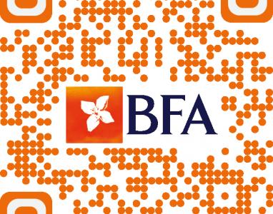 Alerta!!! Não caia no golpe de verificação de conta do BFA!